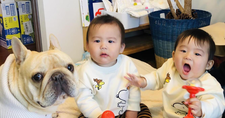 双子の子育てを助けてくれる救世主!【ユーザーレポート#1・後編】